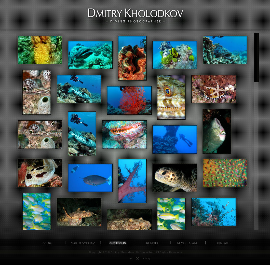 Diving photographer website design Melbourne